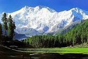 •	Kashmir Honeymoon Tour Package